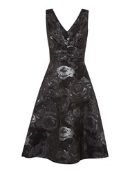 Untold Jacquard Fit And Flare Dress Black