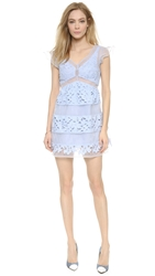 J.O.A. Lace Dress Periwinkle