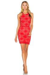 Endless Rose Woven Lace Dress Red