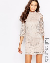 Vero Moda Tall Half Sleeve All Over Lace Dress Champange