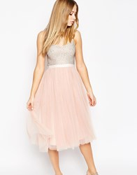 Needle And Thread Eastern Embellished Bodice Coppelia Ballet Dress Pink