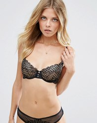Ultimo Phoenix Cut And Sew Bra Black And Gold