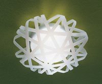 Leucos X Ray P Pl Wall Or Ceiling Light