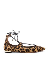 Aquazzura Christy Flats In Brown Animal Print