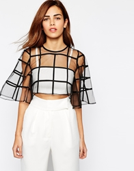 Arrogant Cat Cage Mesh Crop Top Black