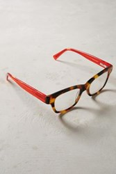 Anthropologie Manuscript Reading Glasses Brown Motif