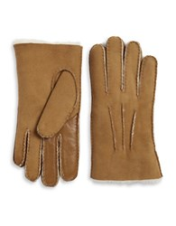 Ugg Sheepskin Smart Glove Chesnut