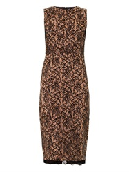 Camilla And Marc Lace Front Fitted Dress