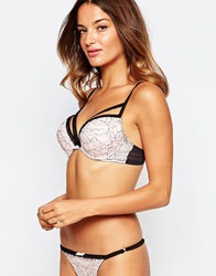 Deni The One Padded Caged Bra Pinkblack