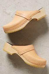 Anthropologie Swedish Hasbeens Husband Clogs Neutral