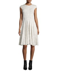Alexander Mcqueen Cap Sleeve Spine Lace Dress Ivory