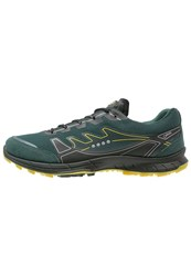 Ecco Biom Trail Fl Trail Running Shoes Dioptase Bamboo Green