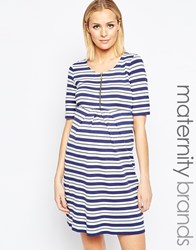 Isabella Oliver Striped Dress With Zip Detail Multi