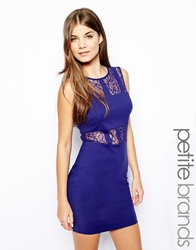 Paper Dolls Petite Exposed Lace Mini Panelled Bodycon Dress Cobaltblue
