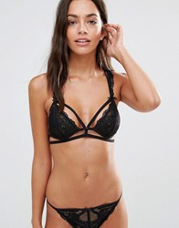 Pour Moi Contradiction By Strapped Soft Bralette Black