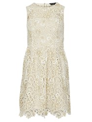 Dorothy Perkins Lace Prom Dress Winter White