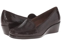 Aerosoles Final Exam Brown Exotic Women's Wedge Shoes