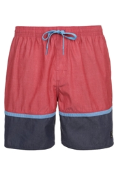 Dc Shoes Turtle Bay Swimming Shorts Jesterred