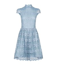 Alice Olivia Maureen Lace Party Dress Female Blue