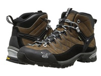 Salewa Hike Trainer Gtx Brown Men's Shoes