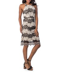 Kensie Two Tone Embroidered Lace Dress Blackwhite