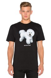 Dog Limited Bichon Frise Tee Black