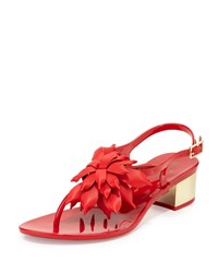 Kate Spade Davina Flower Jelly Low Heel Thong Sandal Red Women's