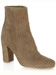 Daniel Rosemead Perforated Ankle Boots Beige