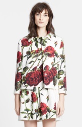 Dolcegabbana Rose Print Short Brocade Jacket White Red