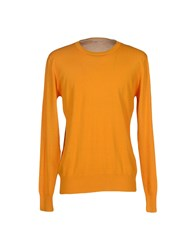 Scout Knitwear Jumpers Men Orange