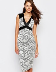 Vesper Jayden Lace Pencil Dress With Satin Trim Ivory Black Cream