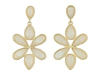 Karen Kane Tidal Wave Statement Earrings Gold Earring
