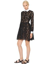 Valentino Heavy Cotton Lace And Pique Dress
