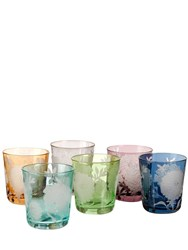 Pols Potten Set Of 6 Peony Frosted Glasses