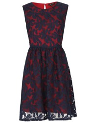 Cutie Embroidered Floral Net Dress Navy