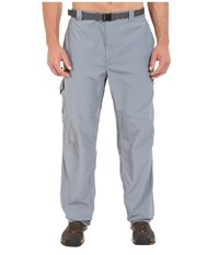Columbia Big Tall Silver Ridge Cargo Pant Grey Ash Men's Casual Pants Gray