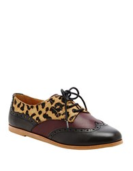 Dolce Vita Adderly Suede Oxfords Leopard