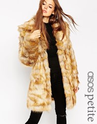 Asos Petite Coat In Pelted Vintage Faux Fur And Shawl Collar Ginger