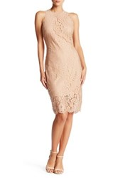 Alexia Admor Lace Sheath Dress Multi