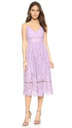 Cynthia Rowley Lace Tea Dress Orchid