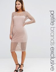 John Zack Petite Grid Mesh Cap Sleeve Bodycon Dress Nude Pink