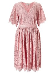 Alice By Temperley Somerset Bold Lace Dress Rose