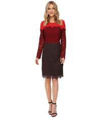 Nue By Shani Tricolor Lace Dress Red Wine Chocolate Women's Dress Burgundy