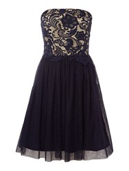 Little Mistress Strapless Lace Overlay Bandeau Dress Navy