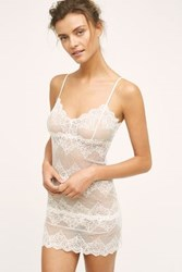 Anthropologie Only Hearts Lace Slip Ivory M Intimates