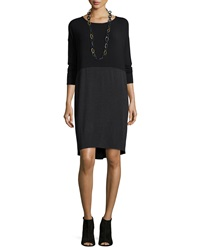 Eileen Fisher Long Sleeve Colorblock Knee Length Dress
