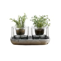 Nude Herb Garden Set Of 2