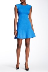Yigal Azrouel Sleeveless Paneled Flare Dress Blue