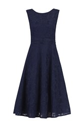 Jolie Moi Lace Bonded Fit And Flare Dress Navy