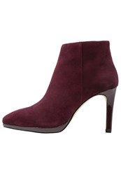 Buffalo High Heeled Ankle Boots Burgundy Bordeaux